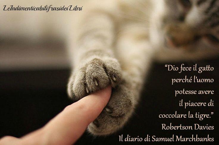 """""""Dio fece il gatto perché l'uomo potesse avere il piacere di coccolare la tigre"""".  Robertson Davies- Il diario di Samuel Marchbanks"""
