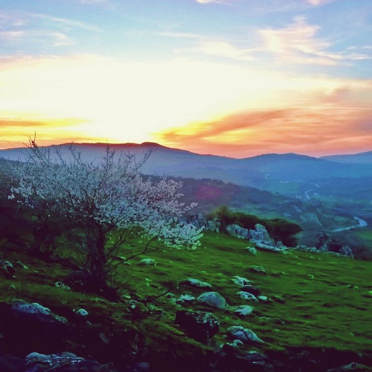 Filia,Lesvos - Greece