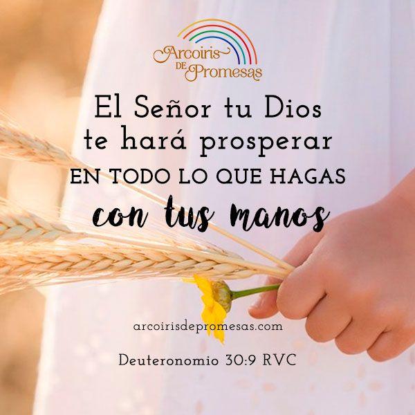 Dios Te Hará Prosperar Dios Me Hizo Dios Promesas De Dios