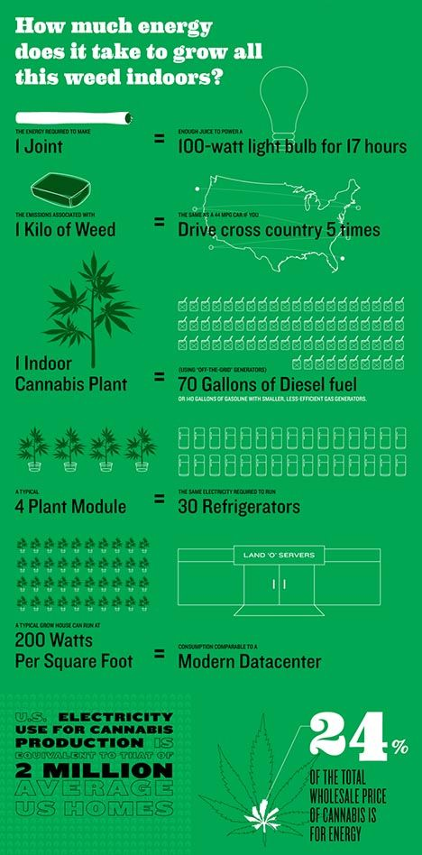 How Much Energy Does It Take to Grow Marijuana Indoors? | Weedist