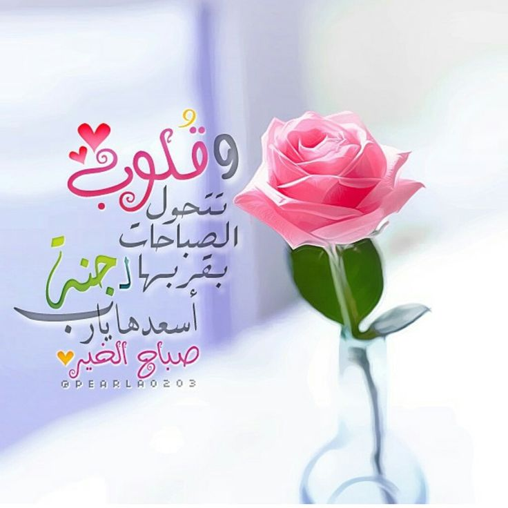 Good morning messages for her in arabic romantic good morning best images on pinterest bonjour good morning messages for her in arabic m4hsunfo