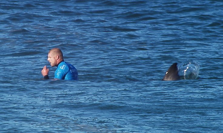 Mick Fanning shark encounter: South African town mulls drones and spotters