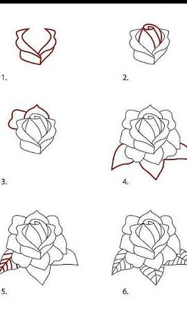 Comment Dessiner Rose Tatoo Pinterest Dessin Dessin Rose Et