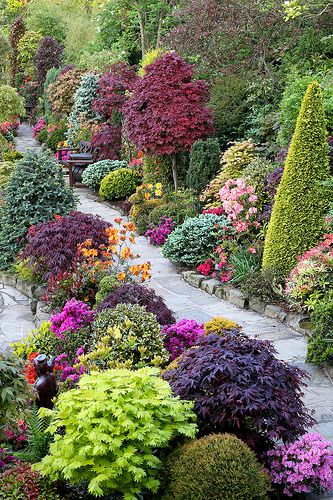 English garden for all seasons.  Amazing colourful shrubs and trees- ariel view.