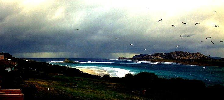 Vento francese che spazzola le creste delle onde, pioggia al largo, gabbiani che svolazzano sguaiati. #sardolicesimo