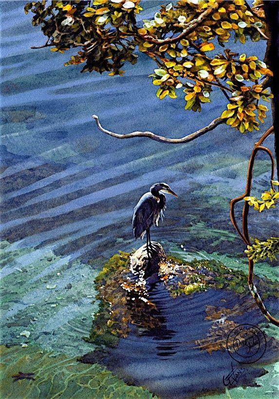 Carol Evans - Great Blue Heron - Patience Beautiful Watercolor!