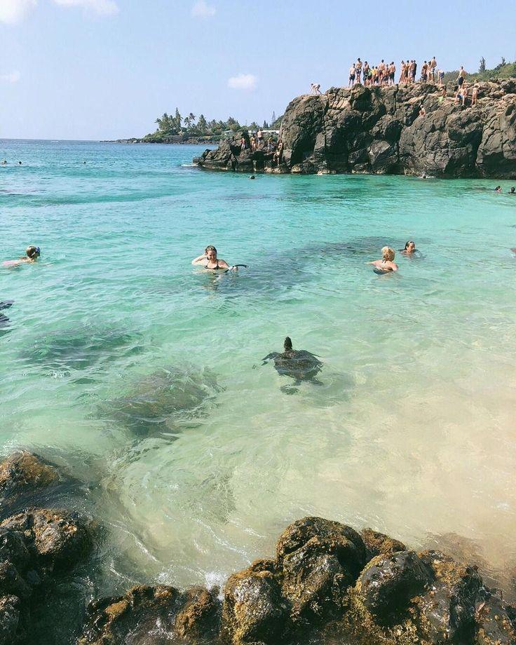 Tropical Island Beaches: Tropical Beaches Paradise