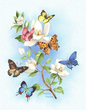 Nature's Delicate Treasures