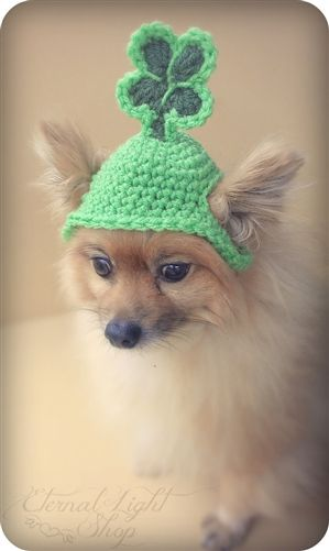 de0ebdf217c31 St. Patrick s Day Beanie Hat - Hats - Hats and Accesories Posh Puppy  Boutique.  dogaccessories  stpatricksday  dogdiy  dogdiyprojects