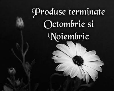 Cerasela Blog: Produse terminate Octombrie si Noiembrie