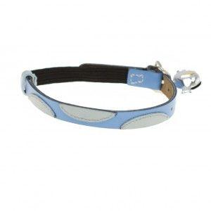 jojo blue cat collar