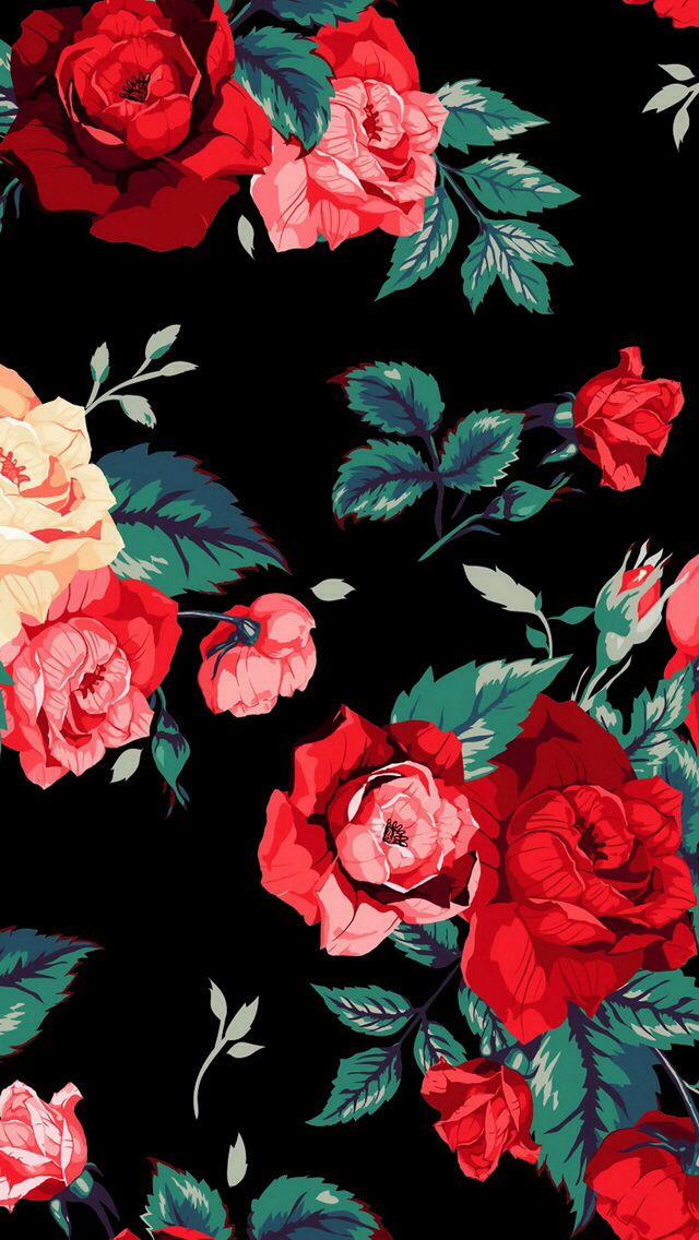 Roses IPhone wallpaper