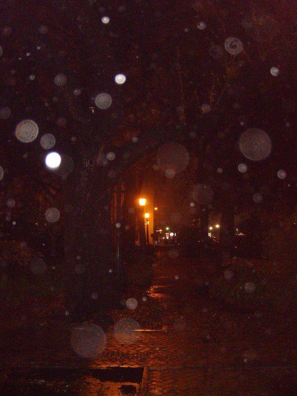 Orbs?  or is it snowing in June?