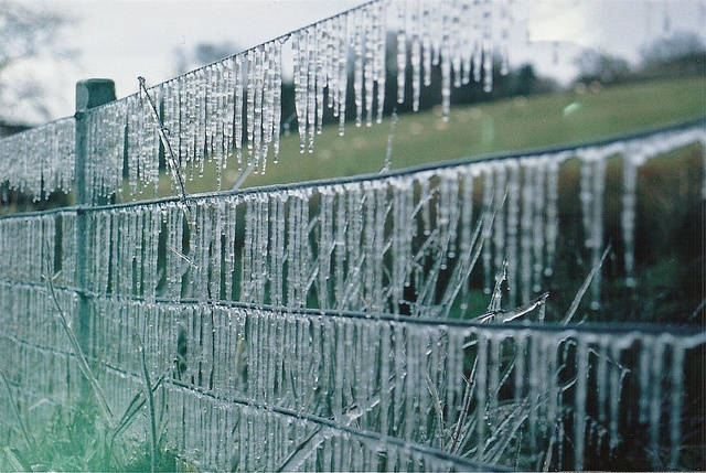 icicle fence!
