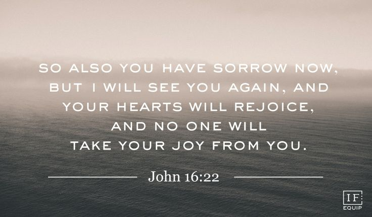 So also you have sorrow now. But I will see you again, and your hearts will rejoice, and no one will take your joy from you.