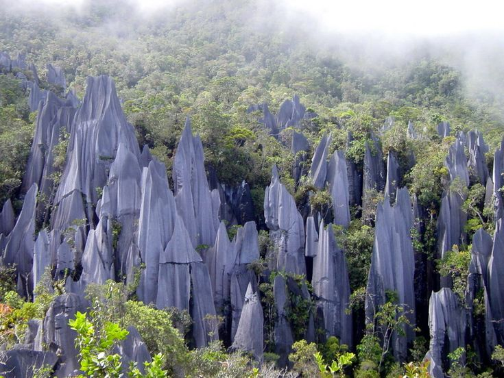 Gunung Mulu National Park - This park is a lush tropical jungle with fast-flowing streams and jagged limestone outcrops. In Borneo, Malaysia these 7798 foot mountains are riddled with spectacular and immense caves, some of the largest in the in the world.