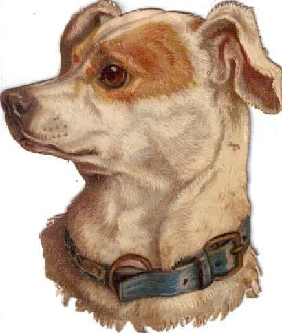 Victorian Die Cut Scrap Terrier Dog w Blue Collar c1880
