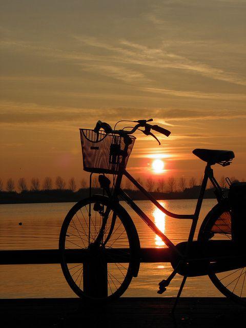 Garimpando Imagens - Amo andar de bicicleta