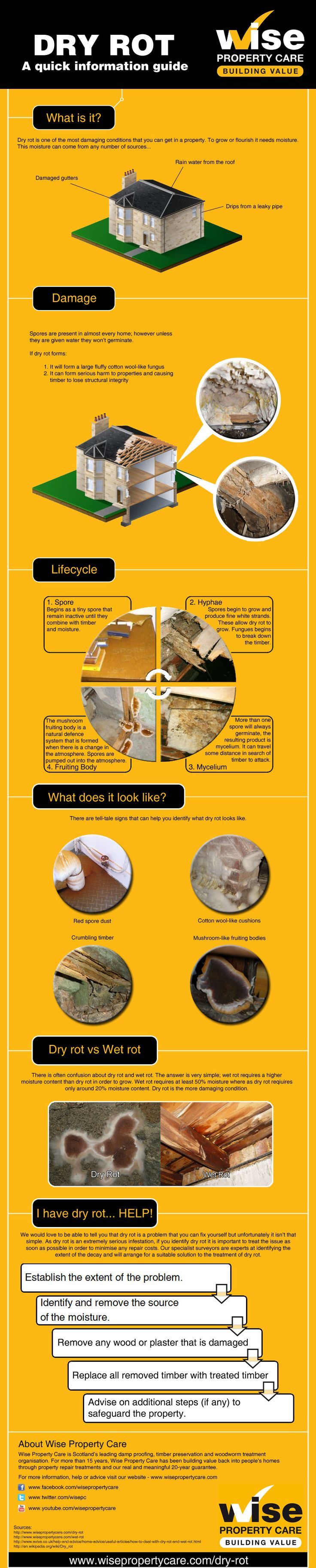 This dry rot inforgraphic will help you identify dry rot issues in your property: http://www.wisepropertycare.com/dry-rot #dryrot #damp #leaks #propertycare #propertyproblems #property #realestate #home #DIY #homeimprovement #rot #wetrot #dampproofing
