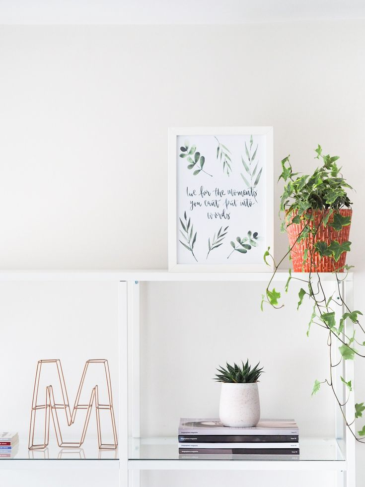 Okay so I might be trying to turn the apartment into a jungle (at least that's what M keeps saying!), but it's not quite that bad yet. There's something about filling a home with plants and bringing the outside in…