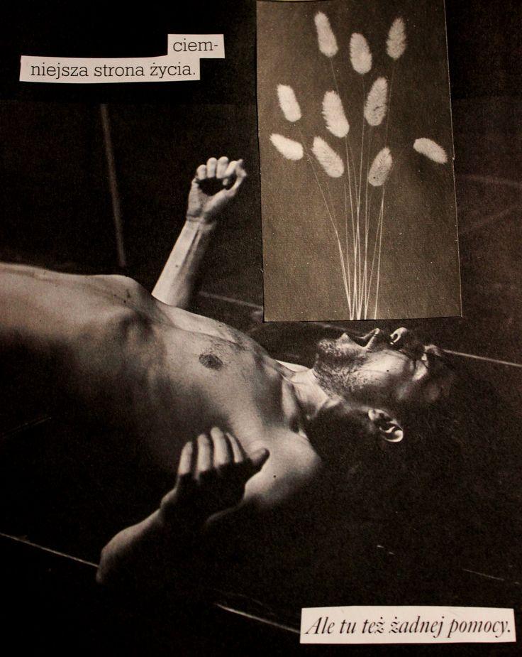 Marcepan collages/ Marcela Dziekan kolaże