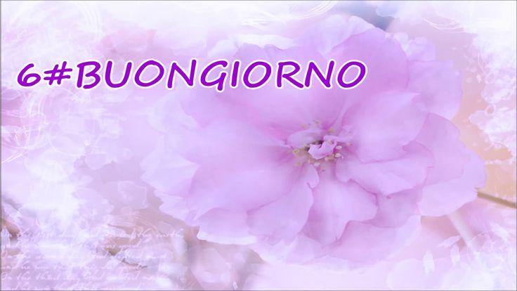 6#Buongiorno ( Un pensiero fiorito...)