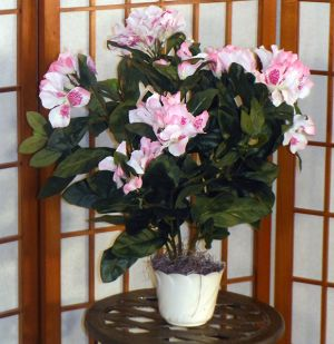 Brighten up any room with this Artificial Rhododendron Bush! Great for placing in niches, end tables; bookshelves, or even the en suite. Makes for a wonderful centerpiece either for indoors or outdoors. Comes potted in a decorative container filled with real moss.  Color Pink Purple White