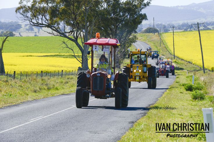 2014 Tractor Trek - The tractor line near Cudal - Ivan Christian Photography http://ivanchristianphotography.com/