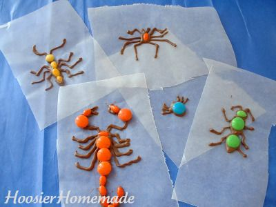 Bugs.fixed.3  M and chocolate bug decorations for cupcakes. Do for preschool program reception??