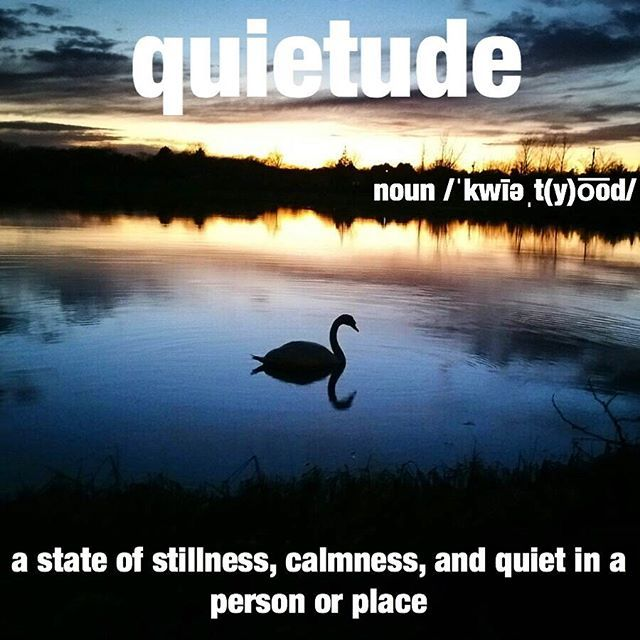 In the quietude of his favorite place he felt at ease. Photo by @bbr25 #calm #breathe #stillness #wordoftheday #dictionary