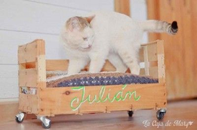 How to make a bed with a fruit box for our pets