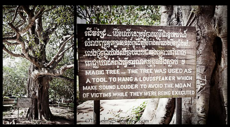 S21 Victims - The Killing Fields Museum of Cambodia
