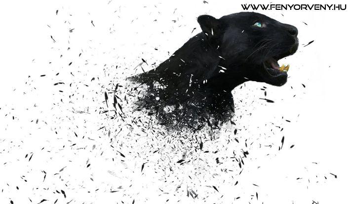 A párduc totemállatnak erős és védelmező jelenléte van. Ha ez a teremtmény a te totemállatod, akkor egy heves és agresszív védelmező áll melletted. A párduc a bátorság, erő és hősiesség szimbóluma. A párducot gyakran a Nappal is összekötik, szoláris rezgései vannak egyes kultúrákban (Dél és Közép-Amerikában).  A párduc totemmel rendelkező egyének általában olyan emberek, akik spirituális tudással jöttek erre a világra.../ Szimbólumok/Állatszimbólumok: Párduc / Fekete párduc ~ ...