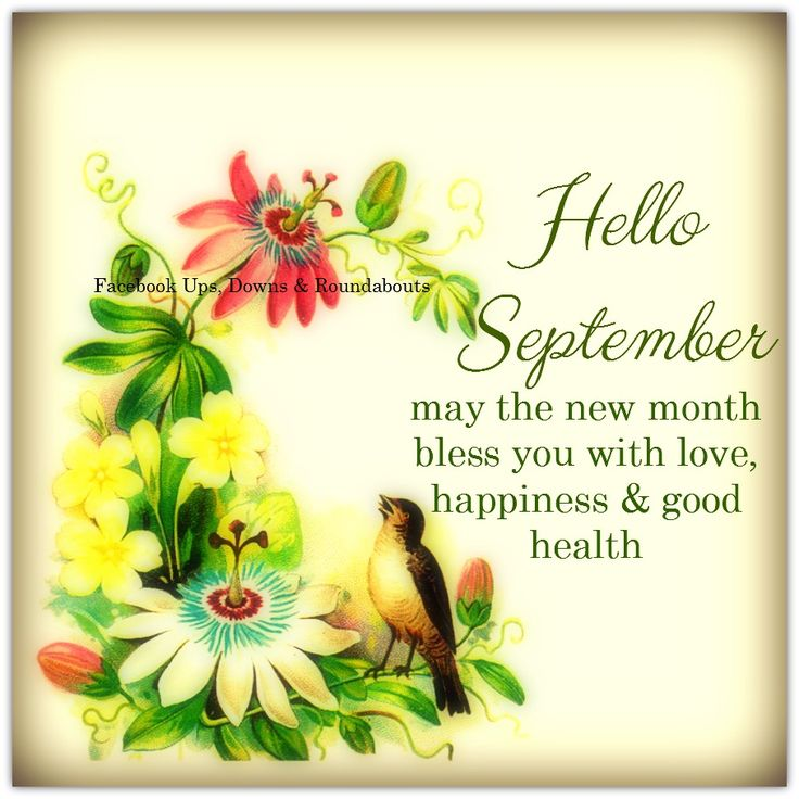 Hello September Quotes: 286 Best Images About New Day, Month Or Season QUOTES On