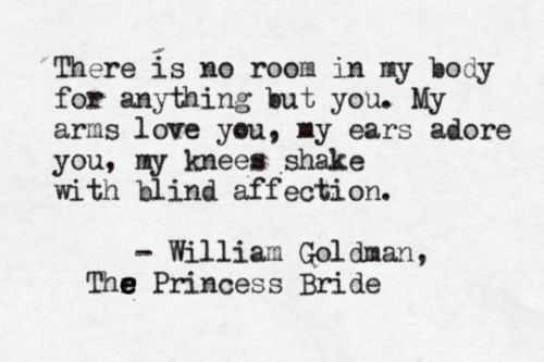 The Princess Bride by William Goldman submission from18graces