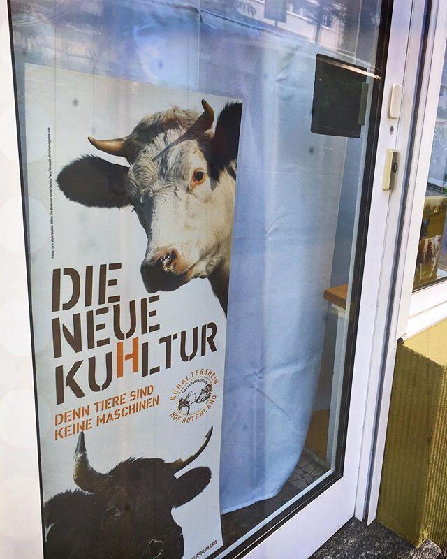 """Ernstes Thema. Frei nach dem Tim Bendzko Song. . . . . . #thuesday #thuesdaymorning #animalpeace #animals  #animal #pictureoftheday #picoftheday #citywalk  #citylife #thisiscologne #cologne #koeln #köln #aufkultour #kultour #cultural #kultur #culturalmarketing #culturalmanagement #marketing #marketingonline #marketingdigital #digitalmarketing #onlinemarketing #life #lifetime"" by @gabymutschke. #sem #communitymanager #redessociales #website #web #google #salesfunnel #webmarketing…"