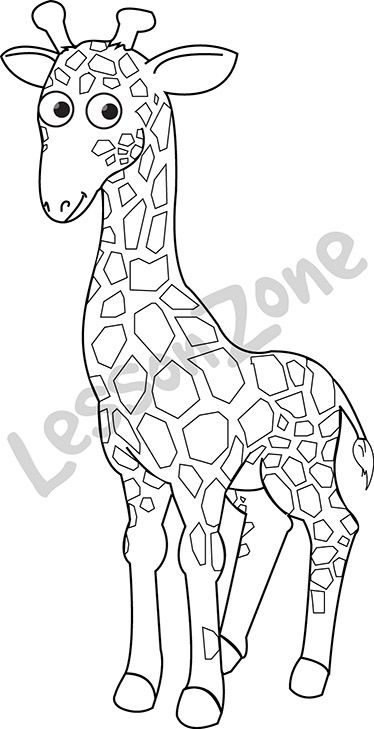 "This black and white outline illustration, ""Giraffe B&W"" is available in PNG format at 300 DPI resolution with a transparent background for classroom use. This illustration is also available in colour.  To download, visit lessonzone.com.au"