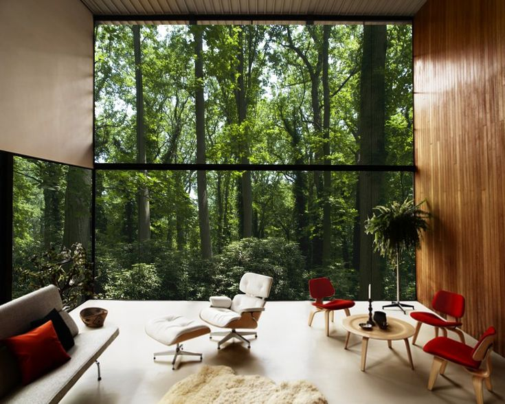 壁一面がガラスという何ともゴージャスなおうちです。森の中にあるようで緑と一緒に暮らしているような感覚になりますよね。癒されます。