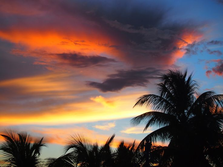 """It is almost impossible to watch a sunset and not dream"" - Bern Williams  We are blessed with stunning sunsets in Barbados. Here are some amazing ones..."