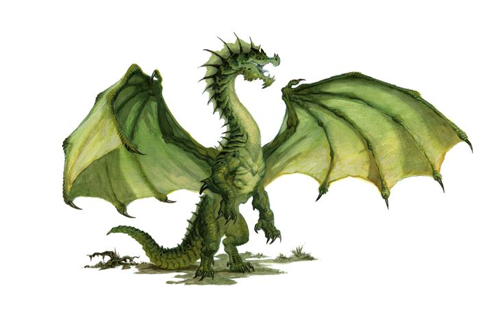 Dragon, Green (from the D&D 5e Monster Manual). Art by Daren Bader.