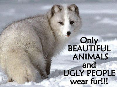 Only BEAUTIFUL ANIMALS and UGLY PEOPLE wear fur !!!