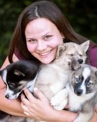 Pomsky Puppies for Sale #pet #store #services http://pet.remmont.com/pomsky-puppies-for-sale-pet-store-services/  A Pomsky puppy is considered as a crossbreed between a Pomeranian and a husky. It is one of the rare dog breeds at the present as well as an expensive one.A Pomsky is a great dog and children love it. Here is a list of recommended websites that not only sell Pomsky, but also other dogs and pets. Here are a few concerns you have to know before buying a cute pomsky puppy: Websites…