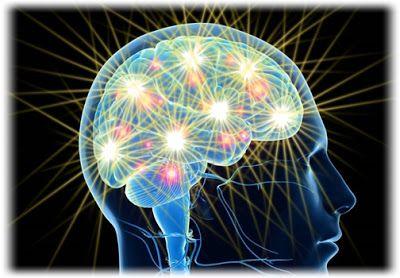 Adina Amironesei - Universul meu : Noi secrete ale creierului dezvăluite. Flexibilita...