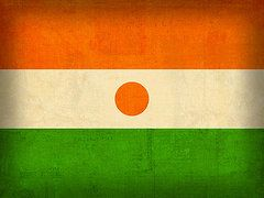Niger Flag Art - Niger Flag Vintage Distressed Finish by Design Turnpike
