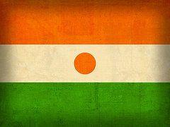 Niger Flag Art - Niger Flag Vintage Distressed Finish by Design Turnpike