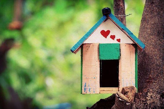 La casa è il luogo dove risiede l'amore, vengono creati i ricordi, arrivano gli amici e la famiglia è per sempre. (Anonimo)  Buon San Valentino a tutti gli innamorati!  #buonsanvalentino #happyvalentinesday #casa #amore #love #amour #amor #liebe #picoftheday #instalove #migliorininternidal1980 #larredamentosumisura #canicattì #sicilia #sicily