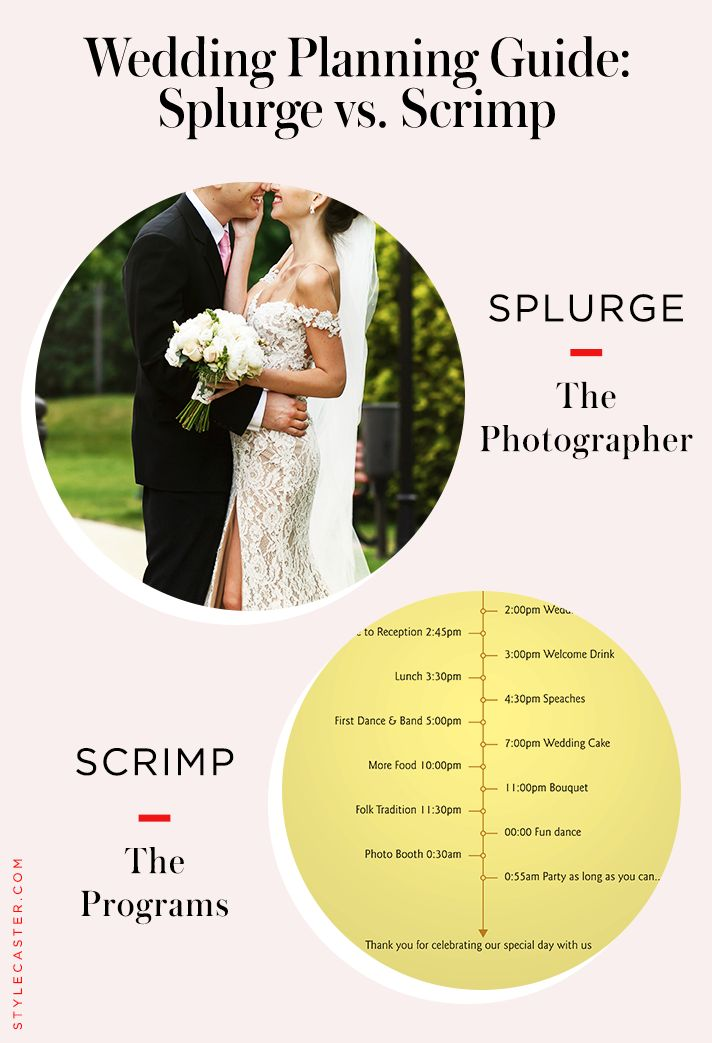 Best 25 wedding planning guide ideas on pinterest engaged now best 25 wedding planning guide ideas on pinterest engaged now what wedding list and wedding timeline planner junglespirit Image collections