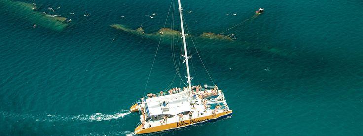 Aruba Snorkeling Palm Pleasure - Afternoon Delight - De Palm Tours Aruba - Island Tours and Activities