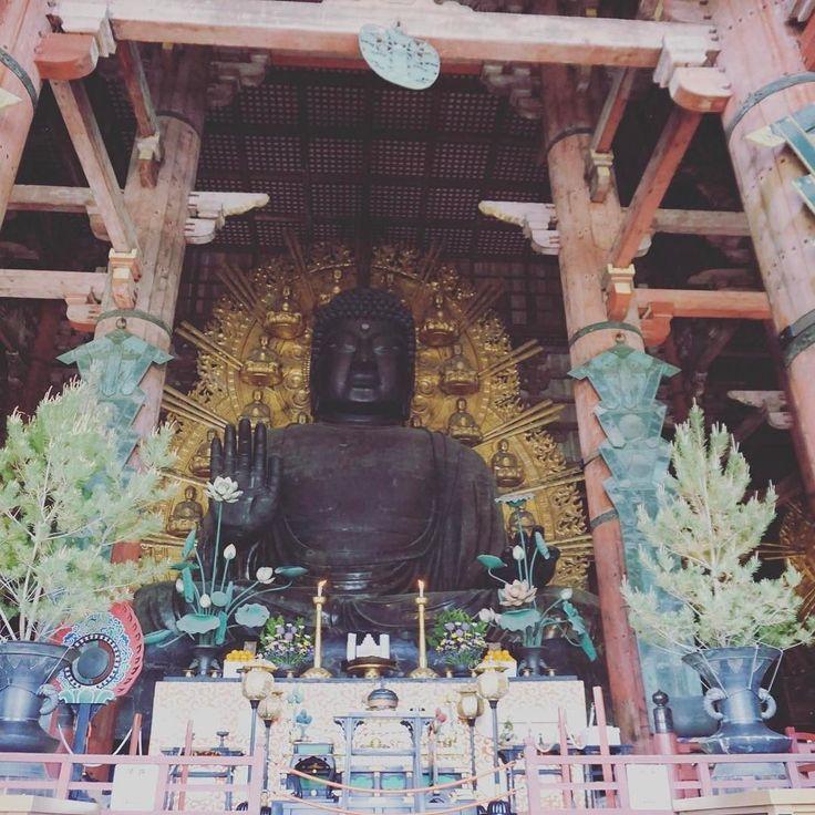 奈良国立美術館で快慶展で天才仏師の仏像を沢山みてからの奈良大仏殿は感動ひとしお奈良に来たら見なきゃね違って見えました #奈良 #日本 #nara #japan #japantrip #アトリエ由花 #国内旅行 #寺院 #旅行好きな人と繋がりたい #旅行好き #大仏