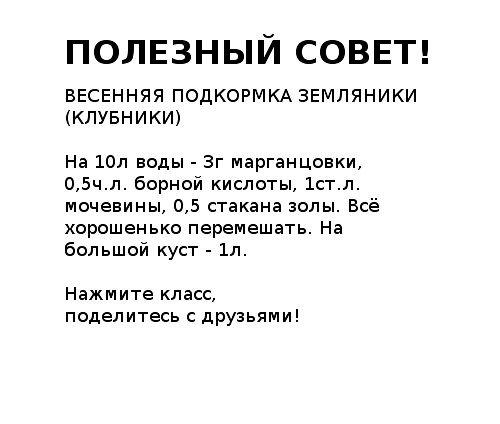 (60) Одноклассники